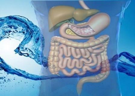 ¿La hidroterapia de colon puede aliviar el estreñimiento?